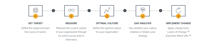 Steps of Organisational Culture consulting