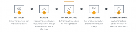 Steps in Organisational Culture Consulting